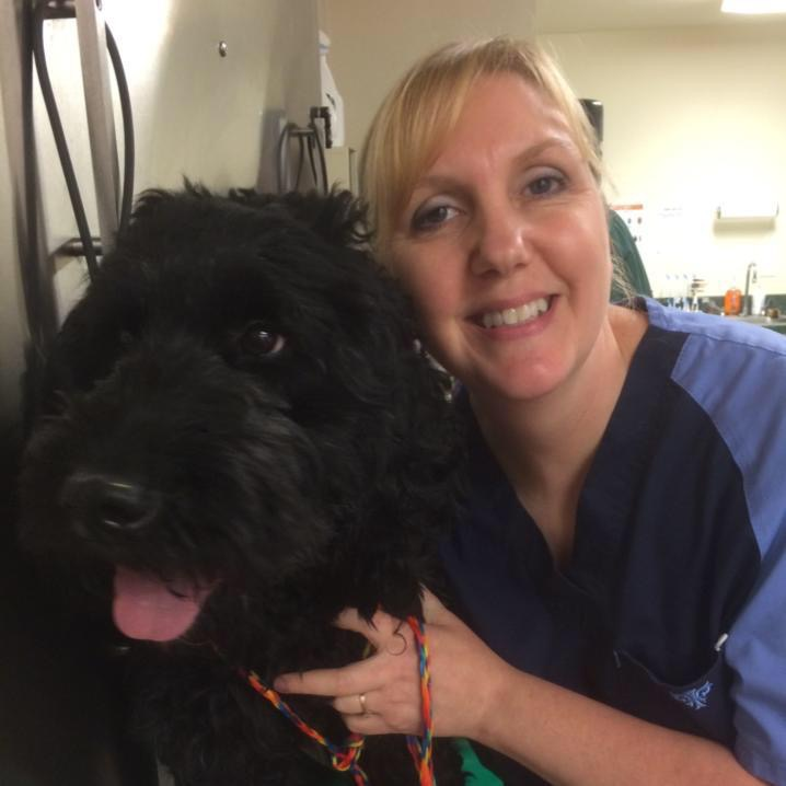 Clyde Park Veterinary Clinic - Wyoming, MI - Jayne Chase, Veterinary Assistant
